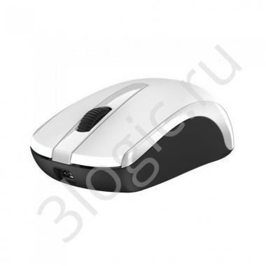 Мышь беспроводная Genius ECO-8100 White [31030004401] белая, BlueEye, 1600dpi, 3 кнопки, 2.4GHz, встроенный аккумулятор, USB приемник